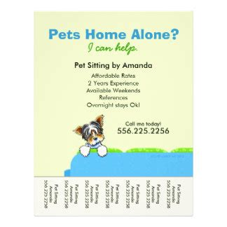 pet flyer templates free pet sitter ad yorkie green tear sheet flyers