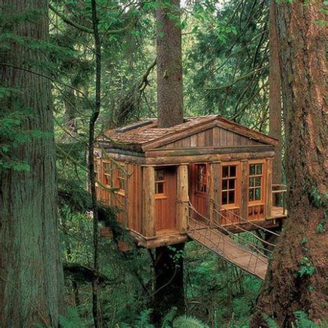 look at these amazing tree houses pictures do not you 20 amazing fairytale tree houses around the globe world