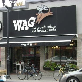 wag caf 233 pet lounge closed 61 photos 17 reviews