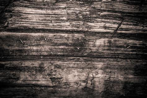 texture wood monochrome  photo  pixabay