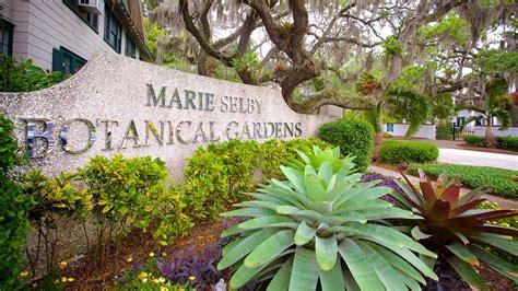 Marie Selby Botanical Gardens In Sarasota Florida Expedia Botanical Gardens Sarasota Fl