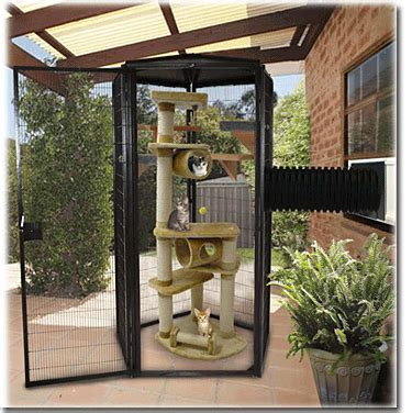 Kandang Kucing Indoor best 25 cat cages ideas on outdoor cat cage