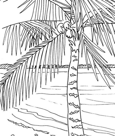 coloring pages for adults beach palm tree coloring page embroidery pattern pdf