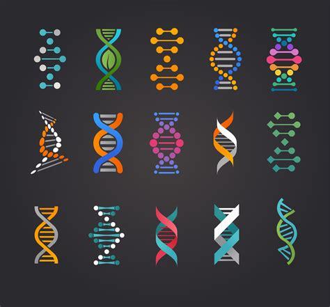art design genetic screens biologia para o enem gen 233 tica blog do qg