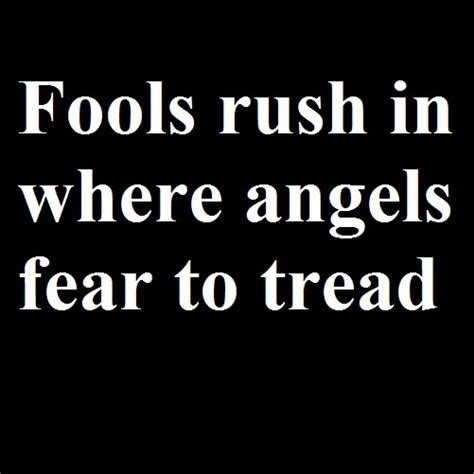 Fools In Where Fear To Tread Essay by Proverbs Proverb Expansion Quotes On Wise Sayings