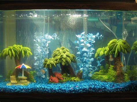 aquarium decoration ideas freshwater best 25 fish tank themes ideas on pinterest aquarium
