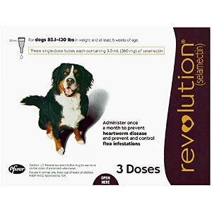 revolution for dogs 11 20 lbs revolution for dogs cats vetdepot