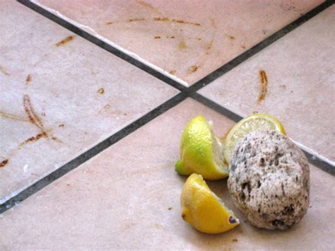how to remove rust stains from porcelain removing rust from porcelain top pumice flexiscour for