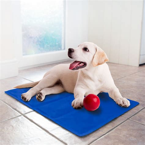 mats on dogs pet cooling mat small dogs cats pet mats b m