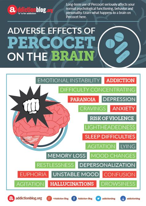 Effects Of Detox On The Brain by Negative Effects Of Percocet On The Brain Infographic