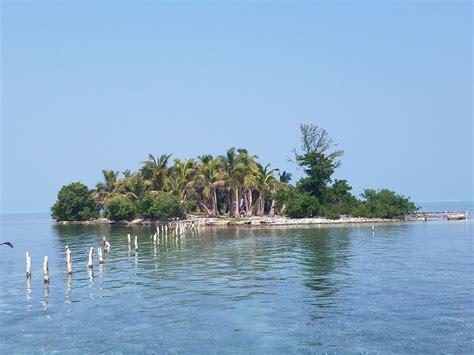 bird island belize rental 100 bird island belize rental belize long term