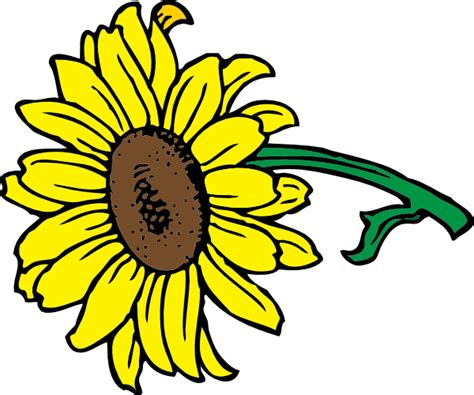 Sunflower Outline Png by Sunflower Clip At Clker Vector Clip Royalty Free Domain