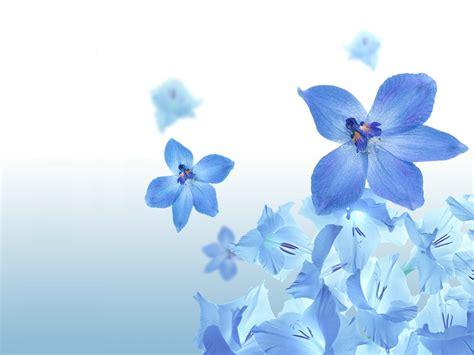 desain kartu nama bunga contoh background pada kartu nama dengan menggunakan