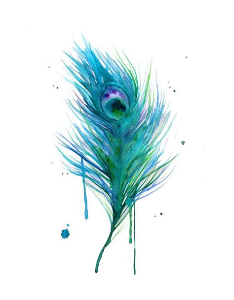 watercolor teal peacock painting print version watercolour peacock feather and