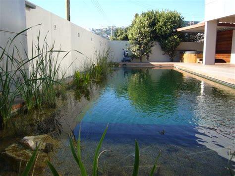 Backyard Pools Nz Living Pool Christchurch Pools Nz