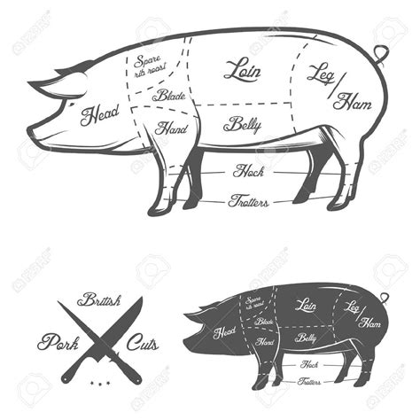 pig diagram butcher pig butcher drawing search drawing