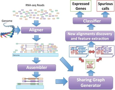 rnaseq workflow the workflow of genescissors pipeline the traditional
