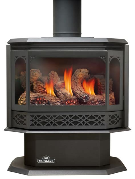 Free Standing Gas Fireplace by Napoleon Gas Stoves Havelock Gds50 Free Standing