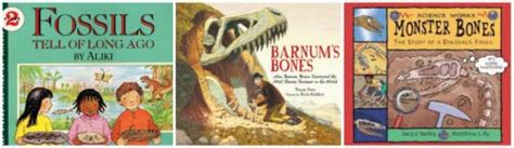 fossil by fossil comparing dinosaur bones books rock testing fossil activities volcanoes for
