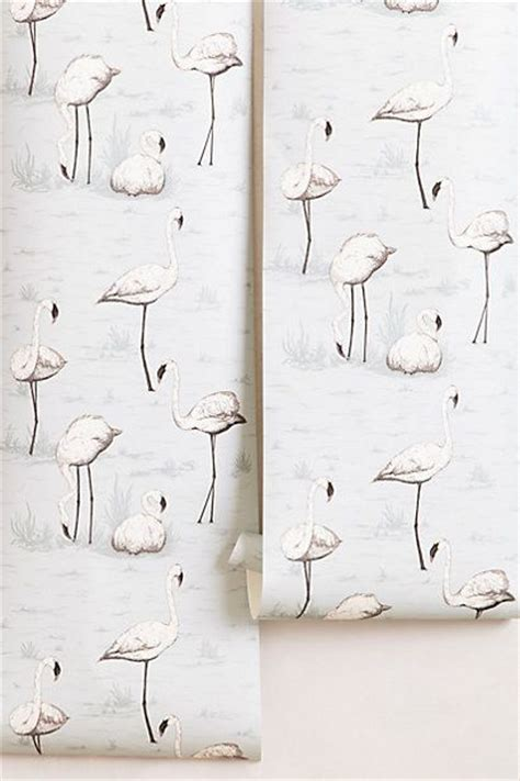 flamingo heaven wallpaper anthropologie flamingo wallpaper i love this for a little