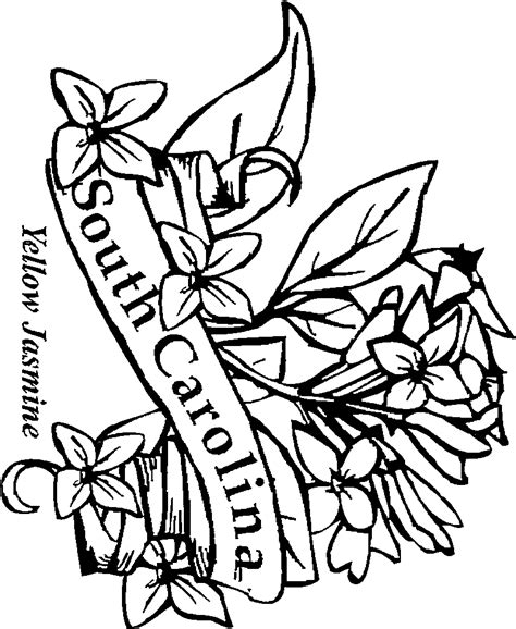 state flowers coloring pages  kids
