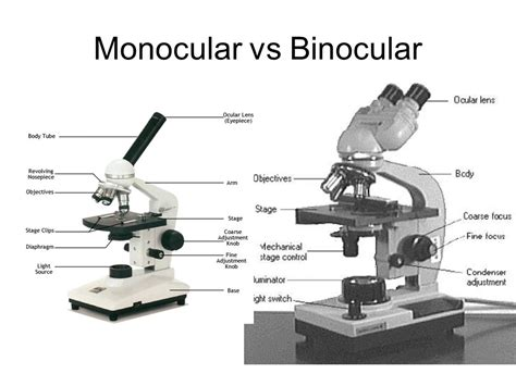 what is a compound light microscope aim how do the parts of the compound light microscope