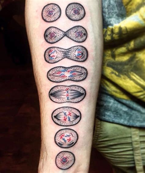 biology tattoo 25 best ideas about science tattoos on