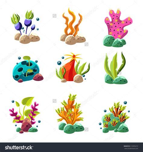algae plant clipart 31