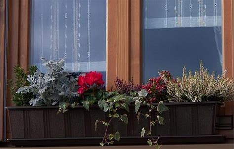 weihnachtsdeko im außenbereich balkon blumenkasten idee