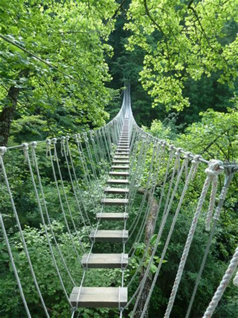 monkey bridge picture of navitat canopy adventures