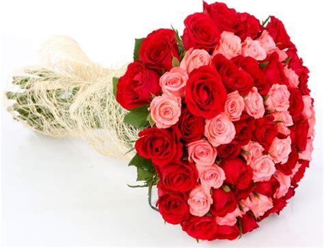 imagenes de rosas rojas y rosadas sepa que flores regalar en san valent 237 n yo util 237 sima