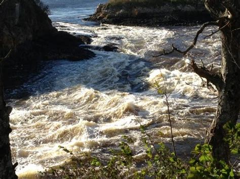 Reversing Falls Restaurant Address Reversing Falls Rapids Top Tips Before You Go With Photos Updated 2017