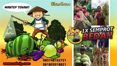 Pupuk Hayati Cair Murah jual biotogrow pupuk cair organik terbaik kupang murah