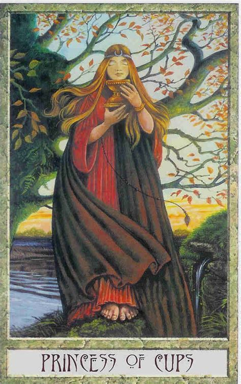 the druid craft tarot mystic wish