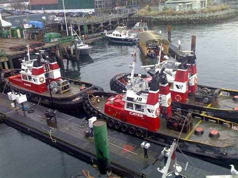 tug boats for sale vancouver cates tug boats lonsdale quay north vancouver ships
