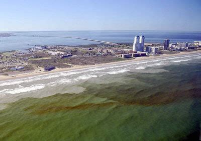 red tide photos 2005