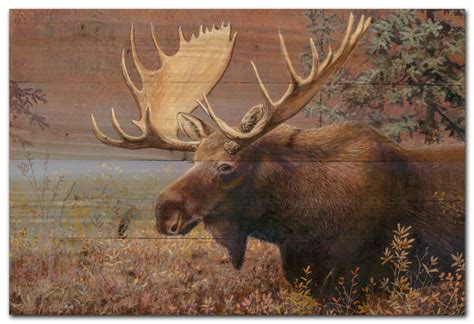 Moose Wall Decor by Chocolate Moose Wall
