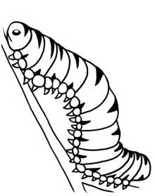 monarch caterpillar coloring page watch a video about the life of sketch template