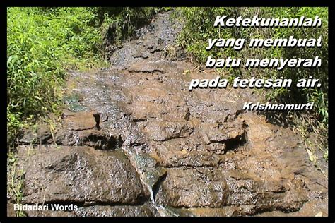 jenis motivasi motivasi organisasi motivator indonesia