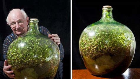 bottle garden hasnt  watered    years