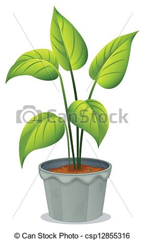 potted plants clipart (75+)