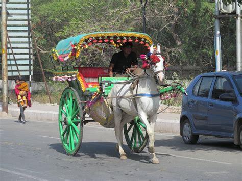 indian cart agra cart india travel forum indiamike com