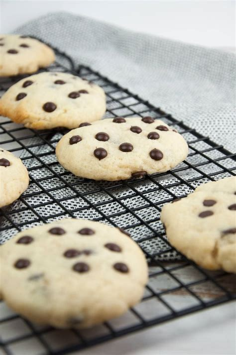 soft baked vegan chocolate chip cookies elephantastic vegan