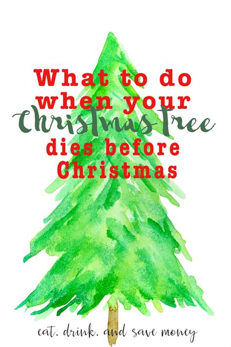 what to do when your dies what to do when your tree dies before eat drink and save money