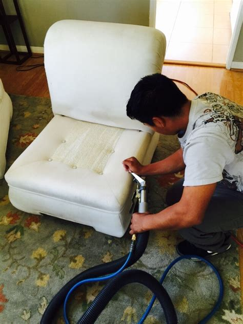 professional couch cleaning nyc professional sofa cleaners mjob blog