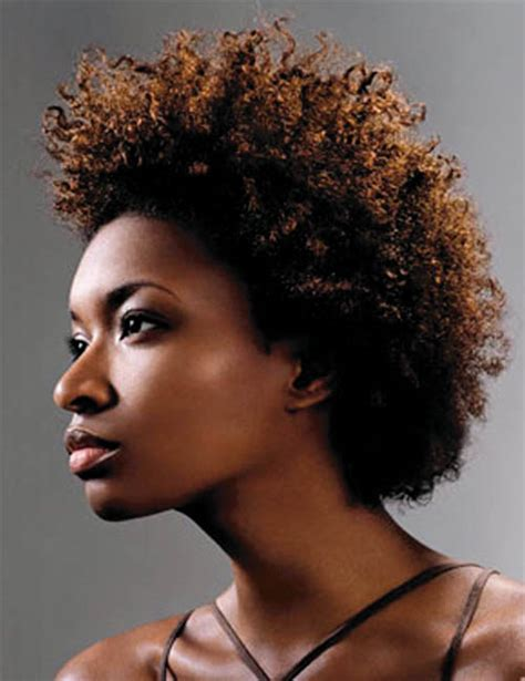afro hairstyles history the history of black hair black history stlamerican com