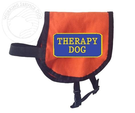 therapy in vest therapy vest complete with two black and white patches