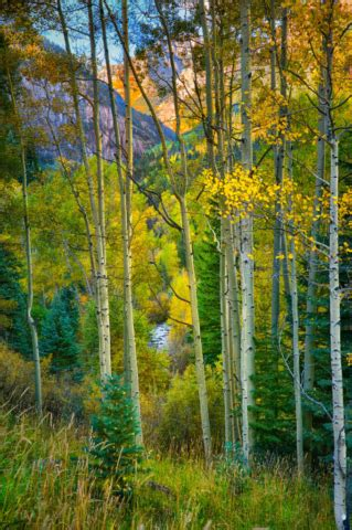 photographs of san juan mountain fall landscapes