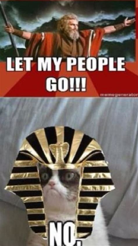 Passover Meme - happy pesach grumpy cat dressed as pharaoh telling moses