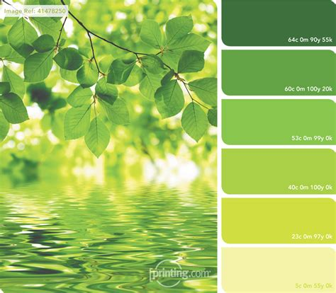 organic colours incorporate the green shades of grass swatches printing com blog
